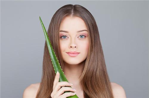 如何使用芦荟促进头发健康