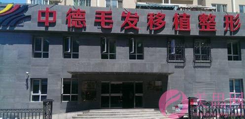 北京中德毛发移植