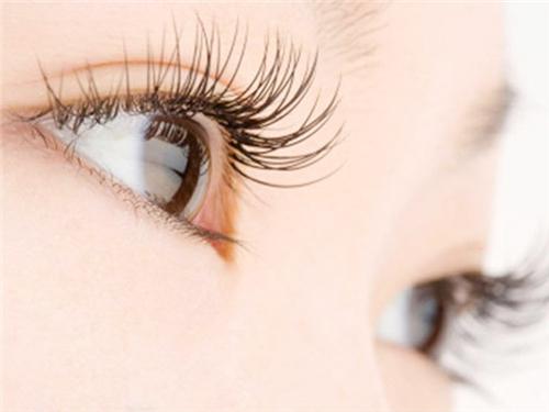 种睫毛有哪些优点和缺点呢
