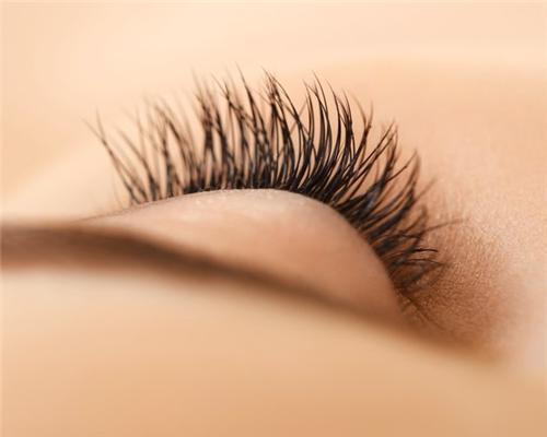 睫毛种植是什么样的手术