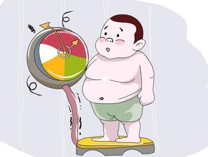 油脂性脱发和肥胖有关吗
