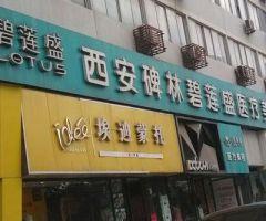 西安碧莲盛植发-logo
